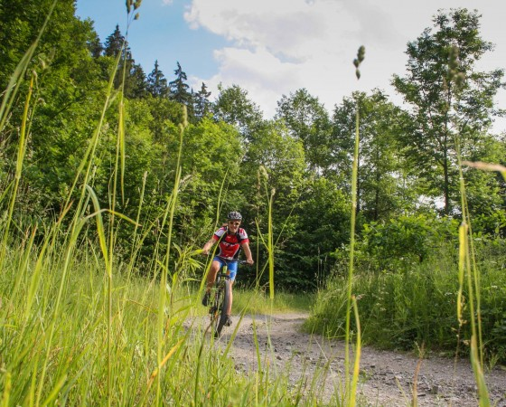 Best Singletrack in Czech